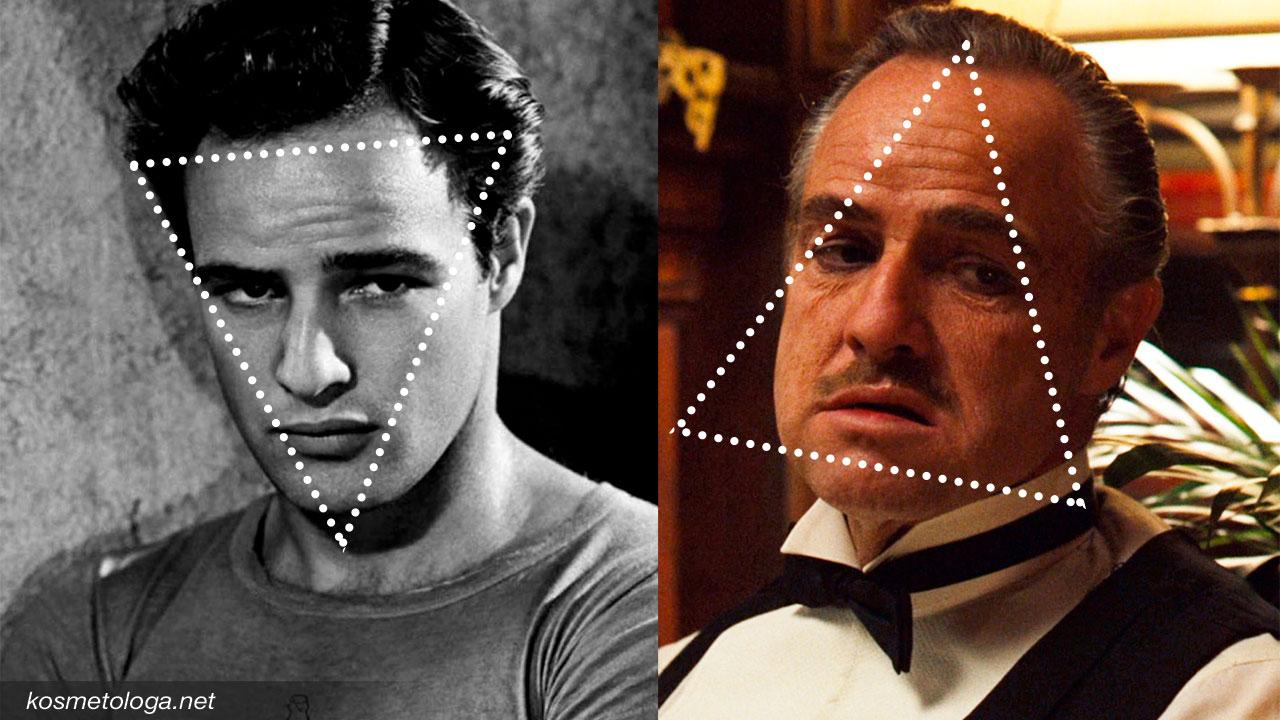Признаки старения - В молодости вершина треугольника направлена вниз, а в старости щёки становятся основанием треугольника.